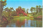 Click here to enlarge image and see more about item p12864: Blossom Time Cypress Gardens FL Postcard p12864