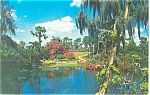 Natural Fairyland Cypress Gardens FL Postcard p12865