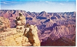 Click here to enlarge image and see more about item p12867: Duck on the Rock,Grand Canyon,AZ Postcard