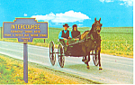 Intercourse, PA Amish Courting Buggy Postcard p12894