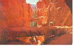 Click here to enlarge image and see more about item p12957: Bryce Canyon National Park Utah Postcard p12957
