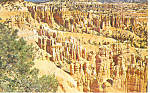 Click here to enlarge image and see more about item p12958: Bryce Canyon National Park,Utah Postcard