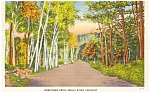 Wells River  Vermont   Postcard