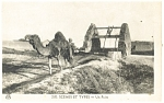 Click here to enlarge image and see more about item p13212: Camel Scene et Types Un Puits Postcard p13212