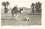 Click here to enlarge image and see more about item p13215: Camel Scene et Types Priere dans le Sahara Postcard