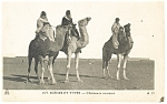 Click here to enlarge image and see more about item p13216: Camel Scene et Types Chameaux coureurs Postcard