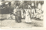 Click here to enlarge image and see more about item p13220: Afrique du Nord Danse des Ouled Nails Algeria Postcard p13220