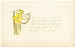 Click here to enlarge image and see more about item p13232: Easter Postcard Daffodils 1910
