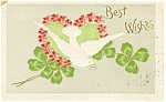 Click here to enlarge image and see more about item p13253: Best Wishes Postcard p13253 Dove Four Leaf Clover