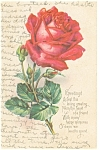 Loving Greetings Postcard p13265  Rose