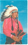 Click here to enlarge image and see more about item p13362: Indian Chief  Postcard