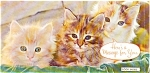 Click here to enlarge image and see more about item p1336: Kittens Private Message Postcard p1336