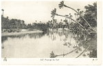Click here to enlarge image and see more about item p13373: Paysage du Sud Postcard