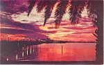 Sunset over Clearwater Bay Florida  Postcard 1959