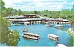 Glass Bottom Boats,Silver Springs, FL  Postcard