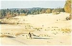 Click here to enlarge image and see more about item p13505: Desert of Maine Panorama Postcard