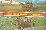Click here to enlarge image and see more about item p13507: Amish Holmes County Ohio Postcard p13507