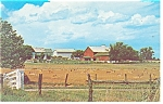 Amish Farm in Dutch Country Postcard p13529