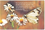 Click here to enlarge image and see more about item p13584: For God so loved the world, that he gave his only Son p13584
