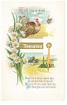 Click here to enlarge image and see more about item p13594: Wish you a Good Thanksgiving Postcard