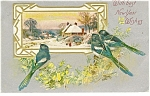 Click here to enlarge image and see more about item p13607: With Best New Year Wishes  Postcard ca 1909 p13607