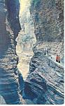Watkins Glen,NY, Watkins Glen Gorge Postcard