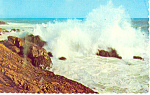 Rolling Surf, Maine Postcard