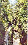 Watkins Glen,NY,  Postcard