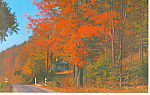 Pennsylvania Highway in Autumn Postcard 1968
