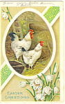 Easter Postcard With Chickens