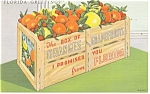 Click here to enlarge image and see more about item p14050: Florida Orange Crate Linen Postcard