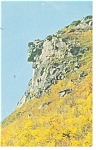 The Old Man Of The Mountain, New Hampshire Postcard