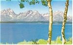 Jackson Lake Grand Tetons WY Postcard p14617