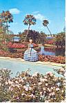 Cypress Gardens,FL, New Azalea Postcard