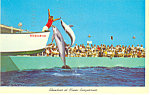 Click here to enlarge image and see more about item p14948: Showtime Miami Seaquarium FL Postcard p14948 1964