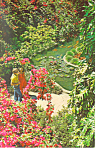 Click here to enlarge image and see more about item p14950: Sunken Gardens St Petersburg FL Postcard p14950