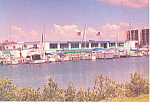 Clearwater Marine Science Center FL Postcard p14973