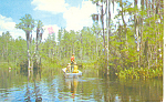 Okefenokee Swamp Park, GA Postcard