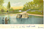 Click here to enlarge image and see more about item p15142: Sea Lions Druid Hill Baltimore MD Postcard p15142 1908