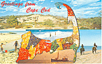 Click here to enlarge image and see more about item p15170: Greetings from Cape Cod Postcard 1980