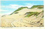 Click here to enlarge image and see more about item p15225: Sand Dunes Cape Cod MA Postcard p15225