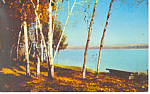 Greetings From Walled Lake MI Postcard p15371