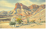 Click here to enlarge image and see more about item p15670: Signal Peak,Guadalupe Mountains, NM  Postcard 1942
