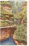 Click here to enlarge image and see more about item p1574: Dells of The Wisconsin River Postcard p1574