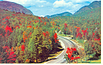 Autumn Foliage Franconia Notch,NH  Postcard 1980