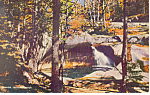 The Basin  Franconia Notch NH  Postcard p15788