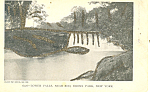 Lower Falls,Bronx Park, New York City  Postcard