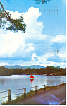 Click here to enlarge image and see more about item p15958: Chase Pond, Andover New London, NH Postcard 1974