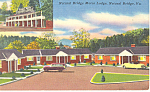 Natural Bridge Motor Lodge Virginia Postcard p16017 Cars 50s
