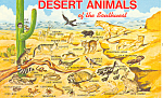 Click here to enlarge image and see more about item p16194: Desert Animals of the Southwest  Postcard